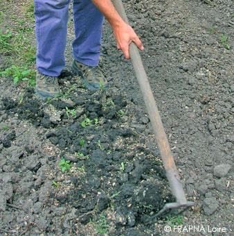 désherbage mécanique du jardin