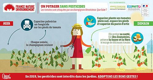 zéro pesticide pour le potager
